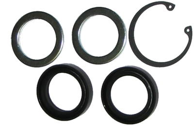 Pitman Shaft Seal Kit 1961-1984