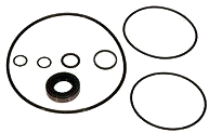 Power Steering Pump Kit 1961-66 Seals